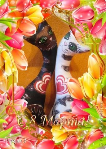 Весенние коты фото 8