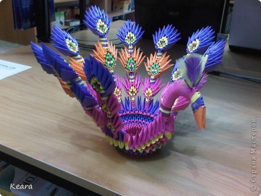 Вот мой первый павлин 3D оригами. Освещение правда подвело, на самом деле он очень яркий. фото 2