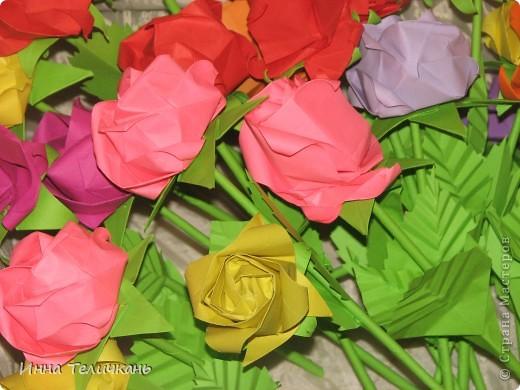 Мои разноцветные розы фото 2