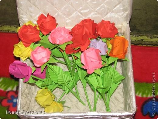 Мои разноцветные розы фото 3
