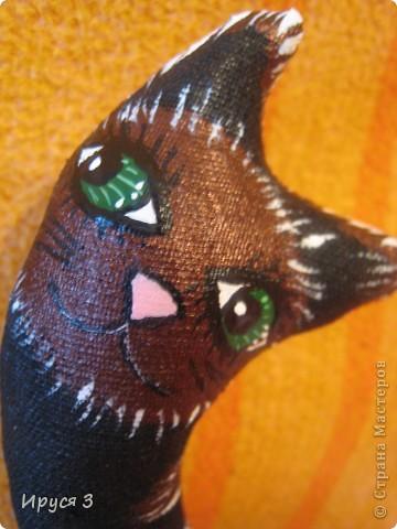 Весенние коты фото 5