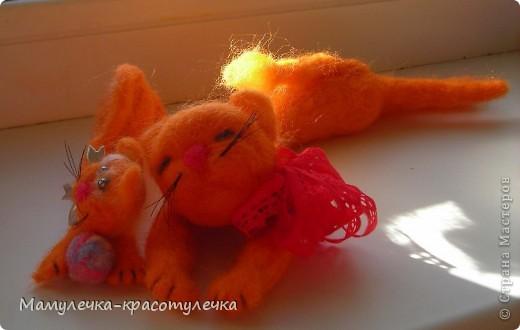 Рыжий-рыжий кот фото 3