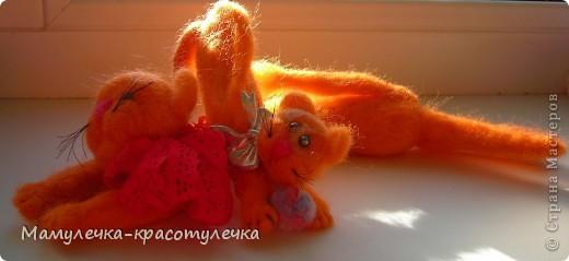 Рыжий-рыжий кот фото 4