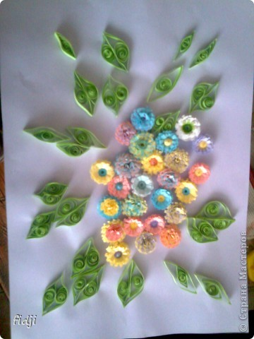 цветут цветы фото 3