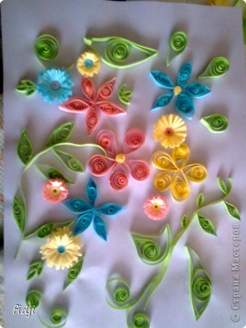 цветут цветы фото 4