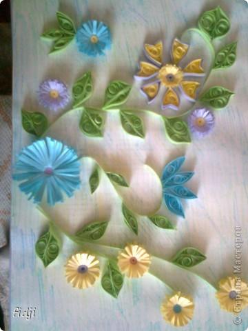 цветут цветы фото 5