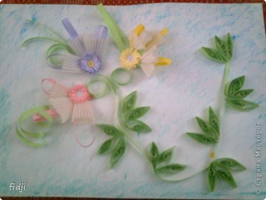 цветут цветы фото 7