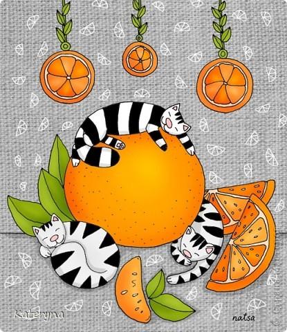 Да-да,именно апельсиновых! А ещё бывают дни приобретения новых привычек и мечтаний о розовых кустах...  фото 1