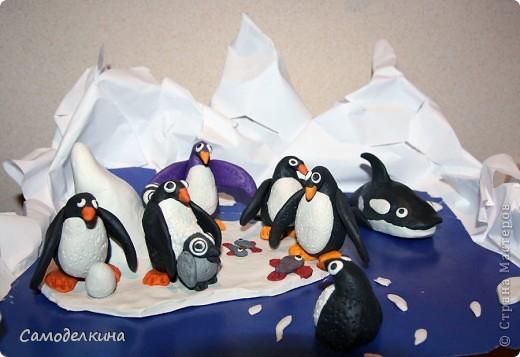 Поделка пингвин на льдине своими руками