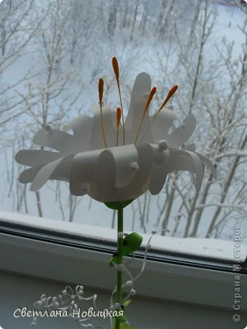 Вот такие объемные цветы придумала и смастерила из детских ладошек. Делаются очень быстро, а эффект потрясающий при минимальной затрате материалов. Правда, с детьми так и не успели попробовать, хотели к 8 марта сделать в подарок мамам.   фото 2