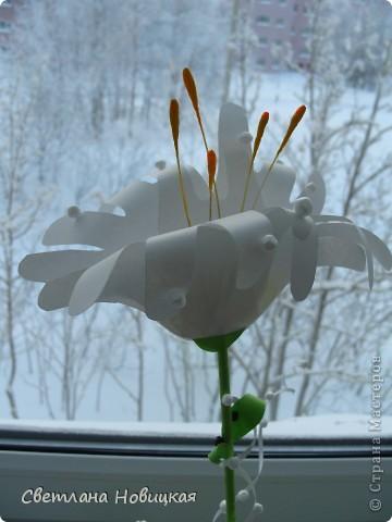 Вот такие объемные цветы придумала и смастерила из детских ладошек. Делаются очень быстро, а эффект потрясающий при минимальной затрате материалов. Правда, с детьми так и не успели попробовать, хотели к 8 марта сделать в подарок мамам.   фото 19