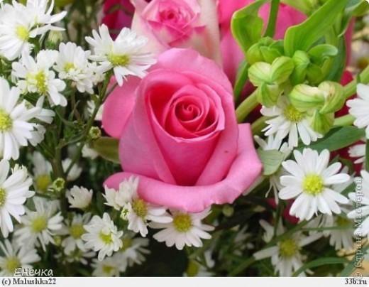 Поздравляю всех женщин с их праздником - 8 марта!Счастья,добра,улыбок!