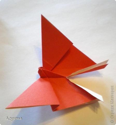 Предлагаю вашему вниманию МК бабочки-оригами. Вроде, такой ещё  не было. Это бабочка хороша тем, что очень быстро и просто складывается, под силу даже детям. фото 10