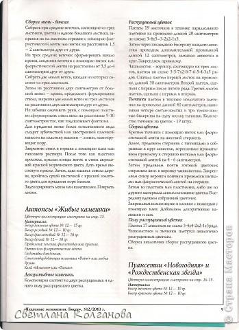 """Скачала из интернета журнал """"Чудные мгновения.Бисер"""" №2, 2010. В нем понравились литопсы """"живые камешки"""", решила сделать, результат перед вами, судить вам насколько хорошо получилось. фото 3"""