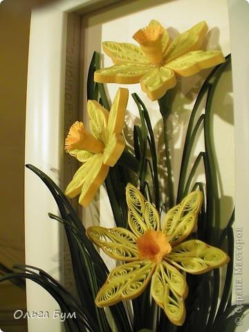 Мои первые нациссики -  к 8 Марта! Солнышки весенние! (Уже подарила!!!) фото 6