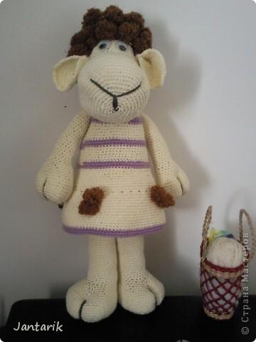 Моя новая кукла - Шошана. Создана благодаря подробному МК от Natalochka_008,за что ей огромное спасибо.  фото 1