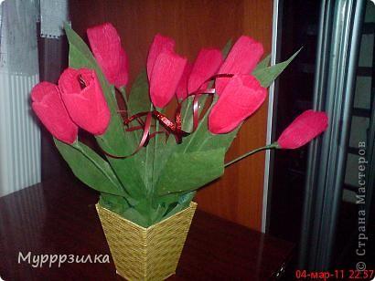 Еще одни тюльпаны фото 1