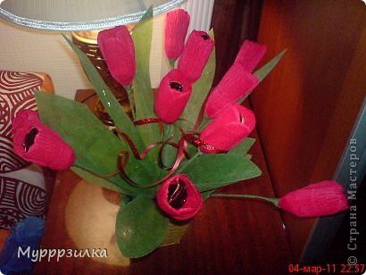 Еще одни тюльпаны фото 3