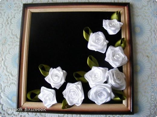 И опять мои любимые розы