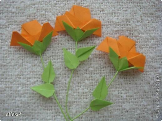 Вот такие розы будем делать завтра на кружке. Я их пока не прикрепила к конверту. фото 31
