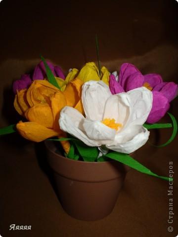 Вот такой подарочек мой сын сделал своей бабушке на 8 МАРТА!!! Думаем, что бабушка будет давольна ))))