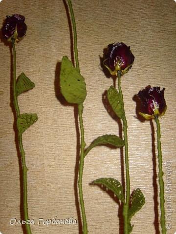 Сетка мет.,Корень,Засушенные розы,шары из ниток,Листья из ниток. фото 8