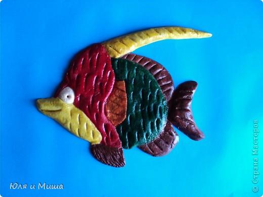 На 8 марта даже рыбки одеваются в самые красивые наряды и спешат на свидание! :) фото 1