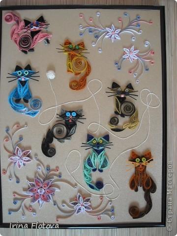 7 кошек, 7 лет счастливой жизни...))) фото 1