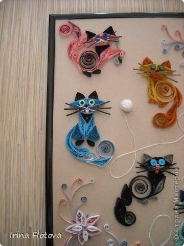 7 кошек, 7 лет счастливой жизни...))) фото 5
