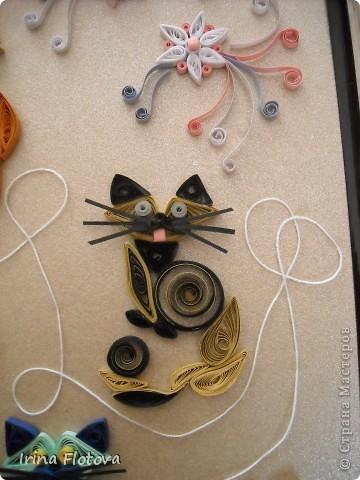 7 кошек, 7 лет счастливой жизни...))) фото 4