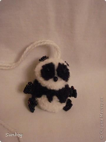 Маленький панда фото 2