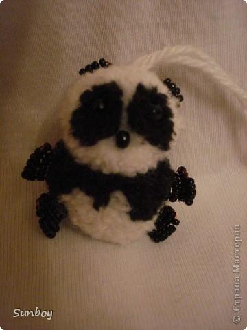 Маленький панда фото 3