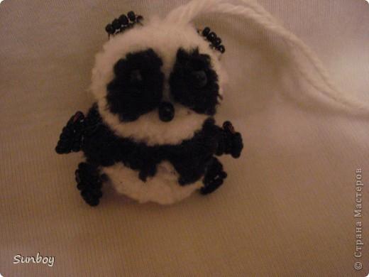 Маленький панда фото 4