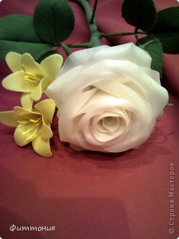 Вот такая белая роза у меня получилась. фото 4