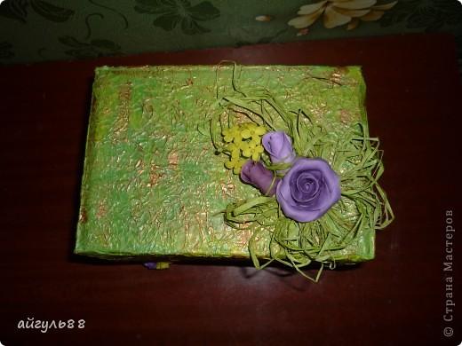 зеленое болото фото 2