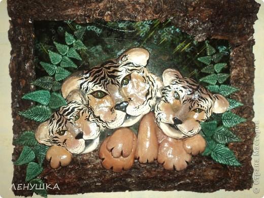 мои тигрята фото 2