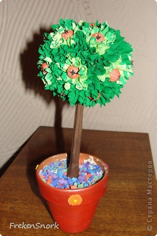 мои деревца фото 3