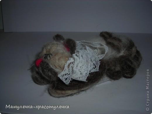 Спящий котёнок фото 2