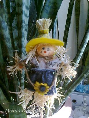 Увидела подобных милашек в цветочном магазине. Решила повторить. фото 1