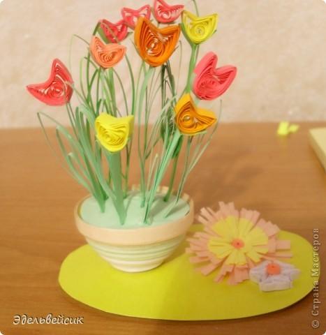 Мои цветочки)))) фото 1