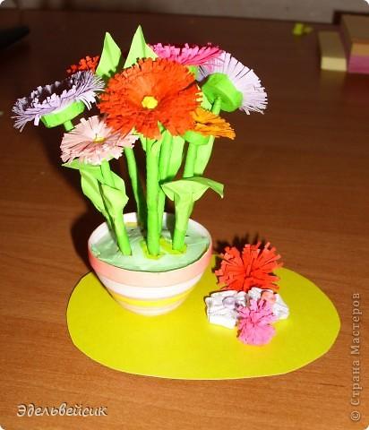 Мои цветочки)))) фото 3