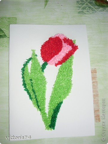 тюльпан для бабушки фото 1