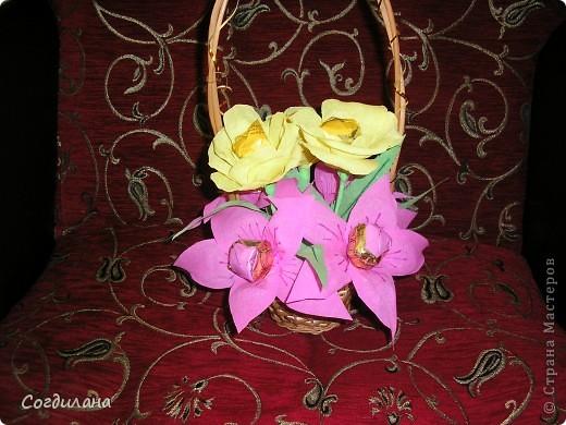 Мои первые цветочки)) фото 1