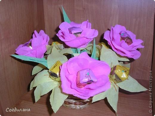 Мои первые цветочки)) фото 3