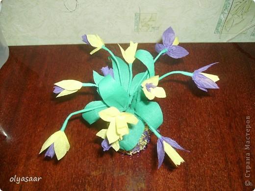 Первоцветы в вазочке. фото 2