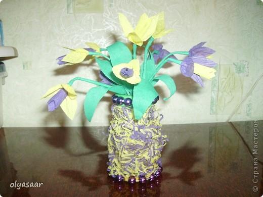 Первоцветы в вазочке. фото 1