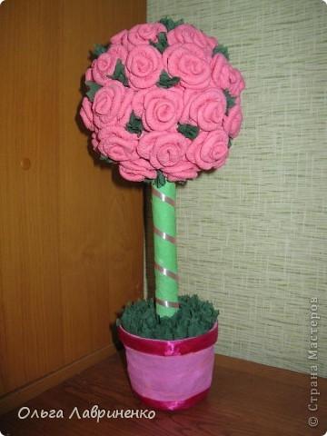 Мое розовое дерево!