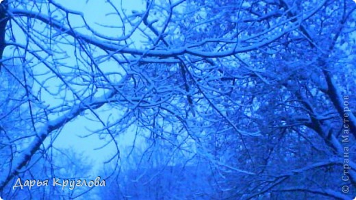 Зима фото 1