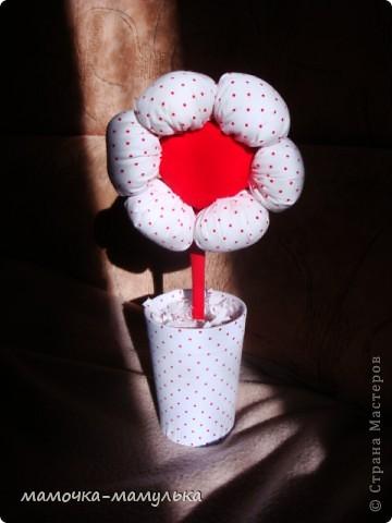 весенний цветочек фото 1