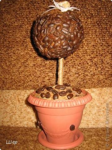 Это кофейное деревце делалось на подарок...